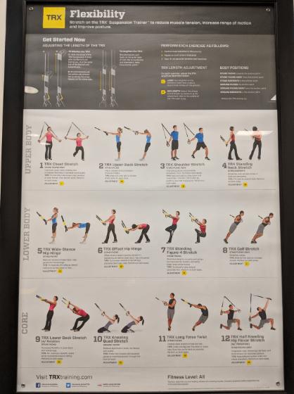 flexibility movements with trx