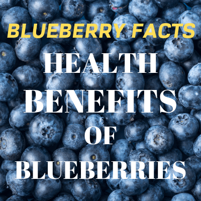 Blueberry Facts – The Benefits of Wild Organic Blueberries