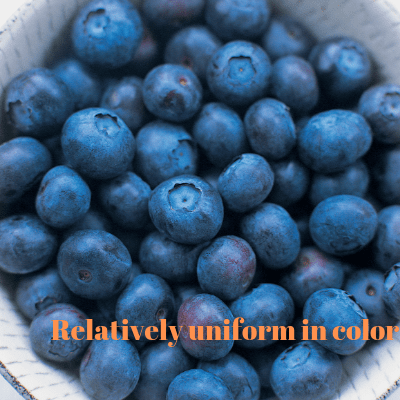 wild organic blueberries