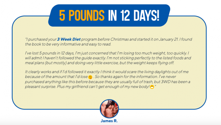 brian flatts three week diet system