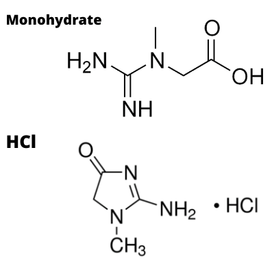 creatine hcl vs monohydrate