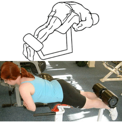 Best Roman Chair For Home Use – Strengthen Your Core And Lower Back